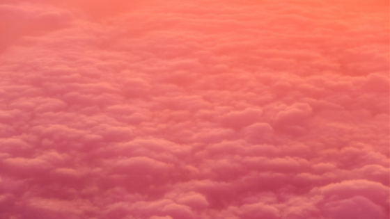 sea of white clouds in pink light