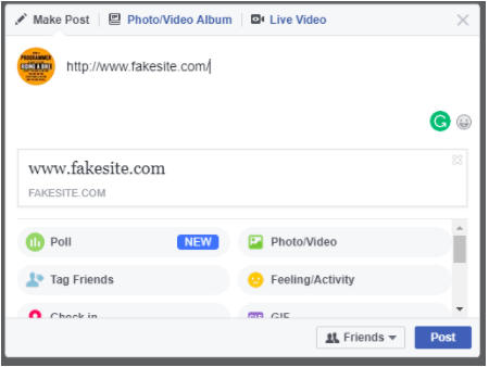 Preview of fakesite.com on Facebook with no thumbnail