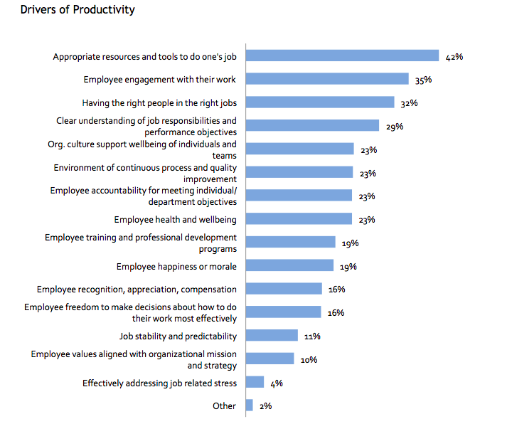 Graphical presentation of Drivers of Productivity
