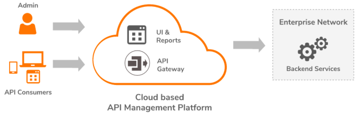 illustration of traditional on cloud api management platform in orange and grey color