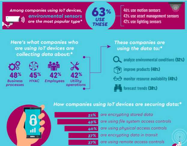 Infographic showing statistics on the usage of internet of smart environment