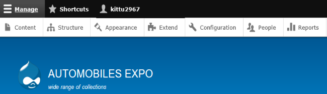 admin interface with admin toolbar and auto mobile expo in the heading structure