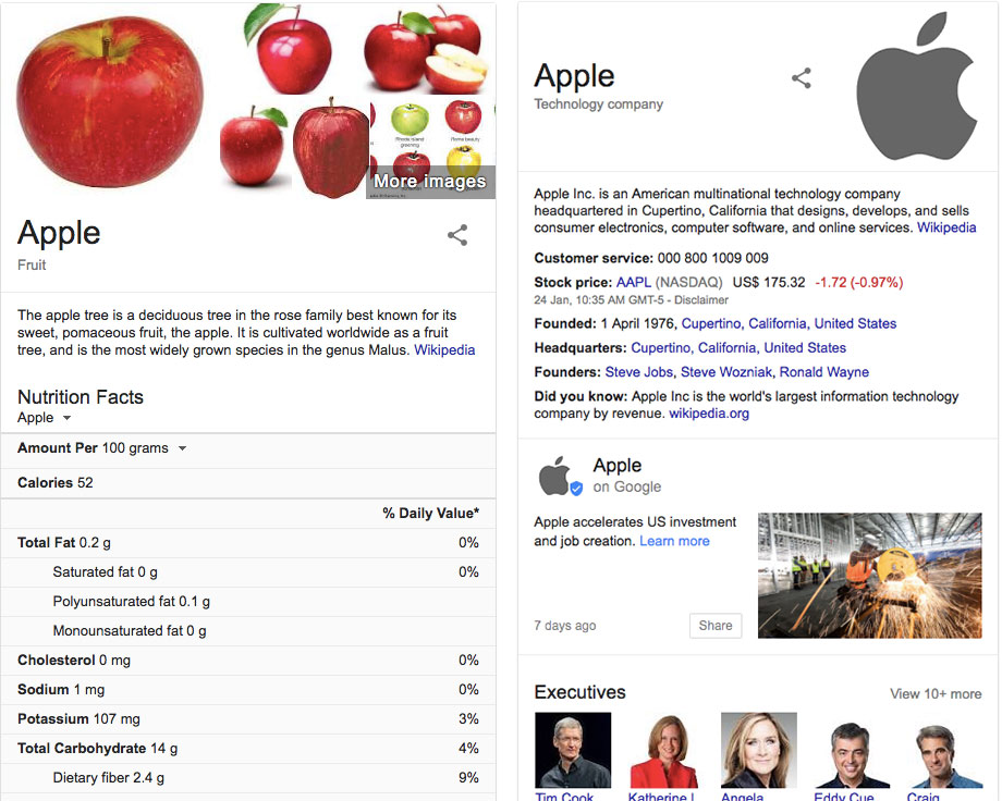 Google knowledge graph result for Apple - the company and the fruit