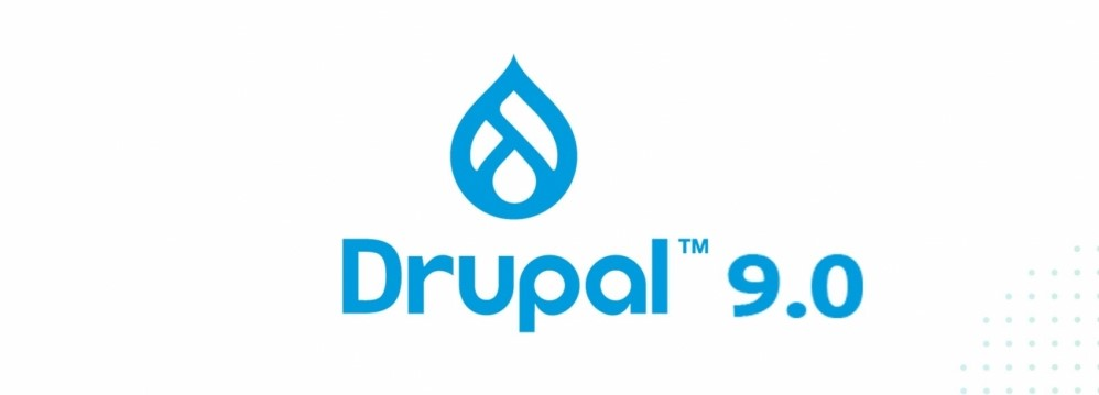 The picture displays the logo of Drupal.
