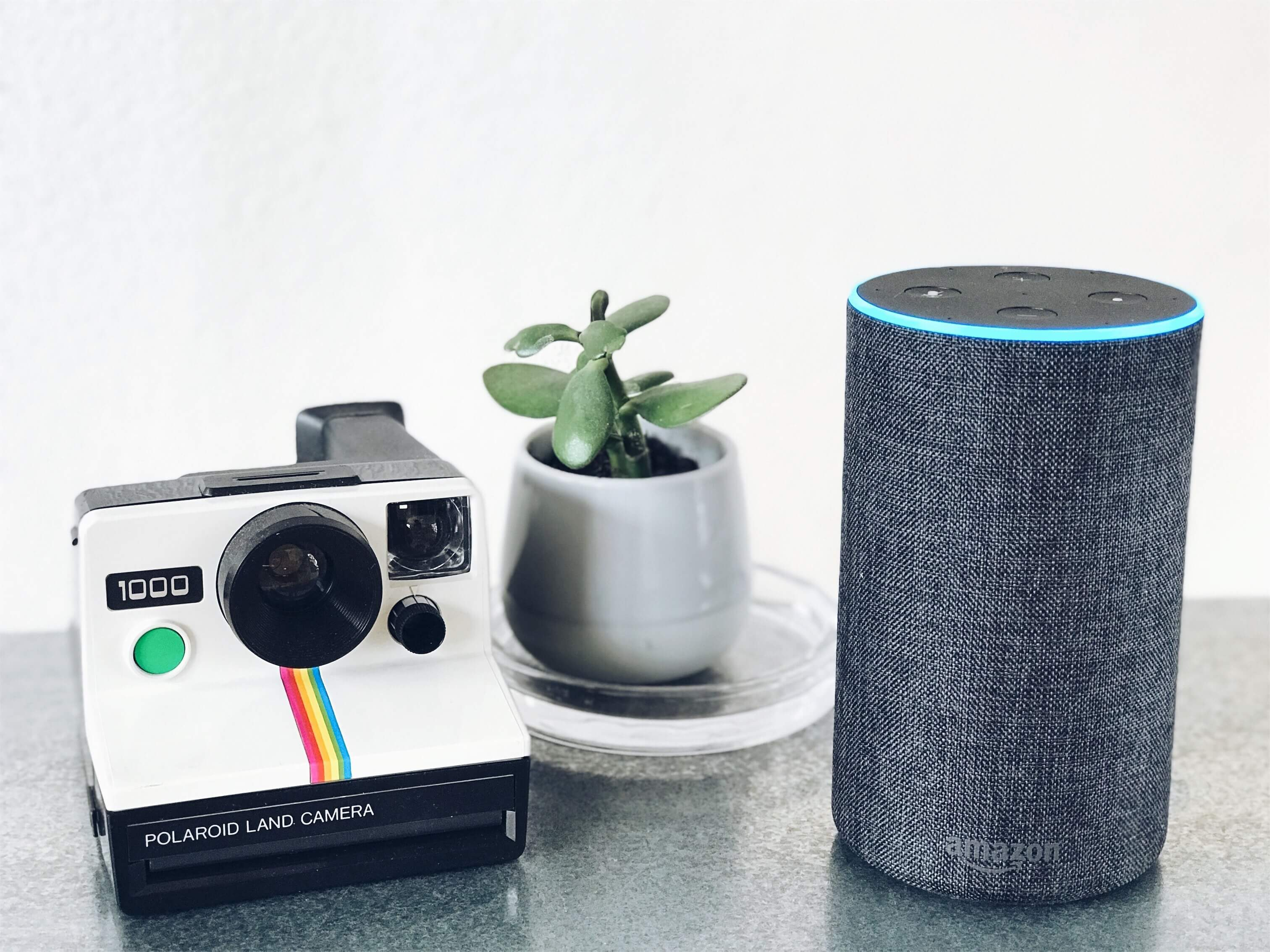 Amazon Echo powered by Alexa, a plant pot, and a polaroid land camera placed close to each other