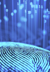 illuminating fingerprint