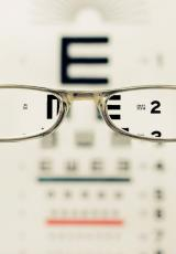 a view from the reading glasses